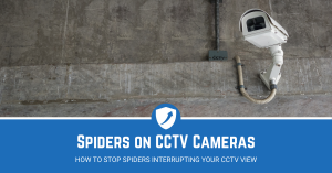 Guide on Stopping Spiders on CCTV