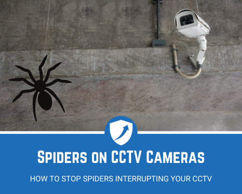 How to Stop Spiders on CCTV